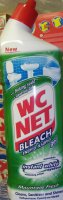 WC NET 750ML BLEACH GEL MOUNTAIN  ZEL